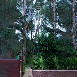 solar garden light on tall pole