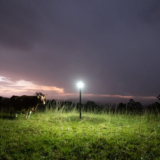 solar light with pole in field shining on farm in north Queensland