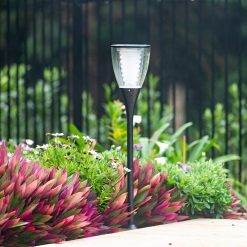 Star 8 Australia solar outdoor garden light next to swimming pool