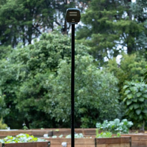 solar pole mounted yard light shining light on vegetable patch