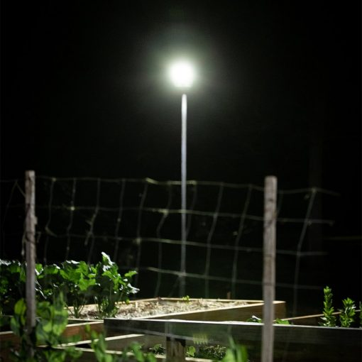 outdoor garden lights with motion detector shining light onto backyard spaces