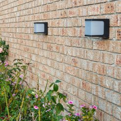 cube solar security lights by Star 8 shining on backyard in Australia